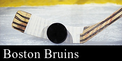 Boston Bruins Trips
